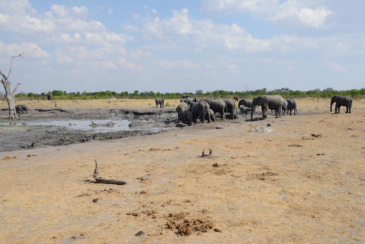 Wasserstand der Brunnen in Afrika